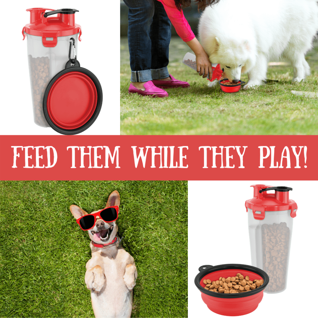 On The Go Pet Water & Food Bottle PET PRODUCTS feed dog on the go 8