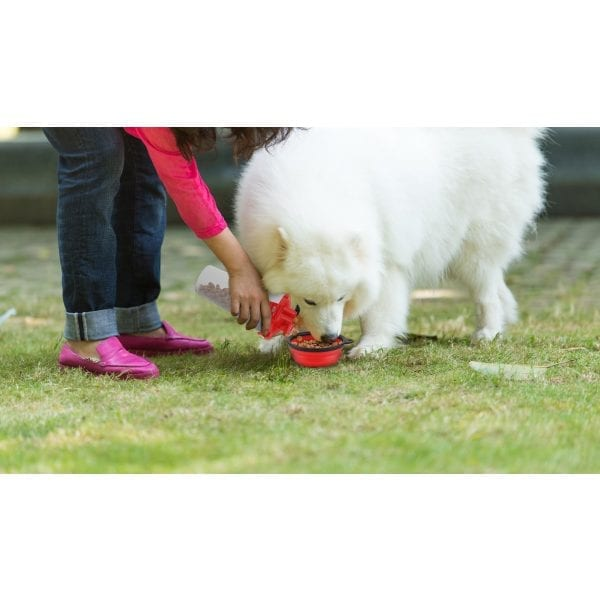 On The Go Pet Water & Food Bottle PET PRODUCTS feed dog on the go 7