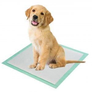 Pet Training Pad 50 Pack FOR DOGS 50 puppy pads