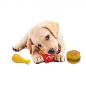 Squeaky Fast Food Pet Toys FOR DOGS dog chew toys